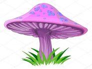 Le fiabe della buonanotte: Il fungo magico