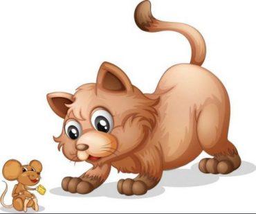 Fiabe della buonanotte: Il gatto e il topo vanno a vivere insieme